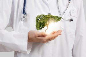 Liver, Spleen Health Management