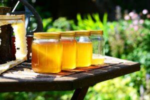 Honey - 100% Natural Organic (Himalayan)